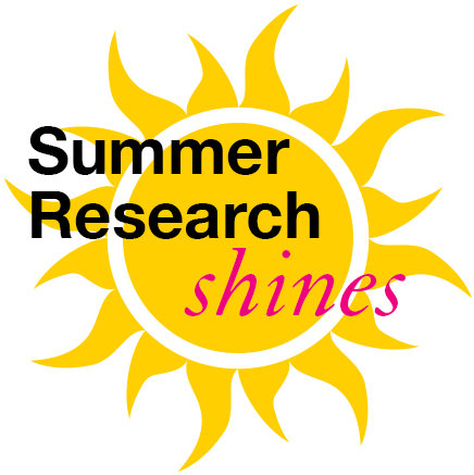 sun graphic points to summer research program